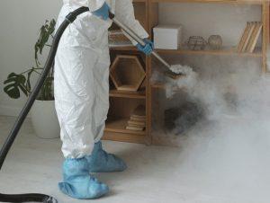 ha túlságosan elszaporodnak a lakásunkban, akkor szükségünk lesz szakemberre, aki profi irtással segít megszabadulnunk a kedves kis rovaroktól.